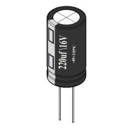 220uF / 16V Electrolytic Capacitor