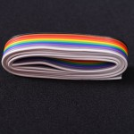 10 Core Flat Ribbon Cable (1 meter) - EE2407-DC10R5